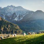 Zwei hübsche Hotels mit Wellness in versteckten Bergtälern